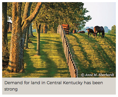 Economy, Sport Horse Farms Spur Central KY Real Estate